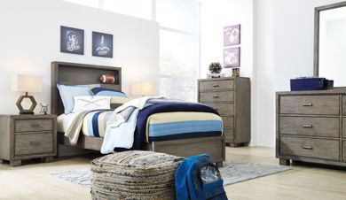 Picture of Arnett - Gray Twin Bookcase Bed
