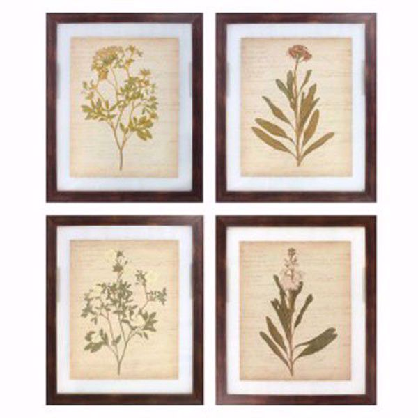 Picture of Dyani 4PC Botanical Print Set